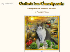 Pension pour chats, Lille